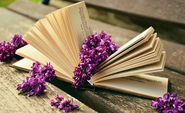 odpočinkové čtení