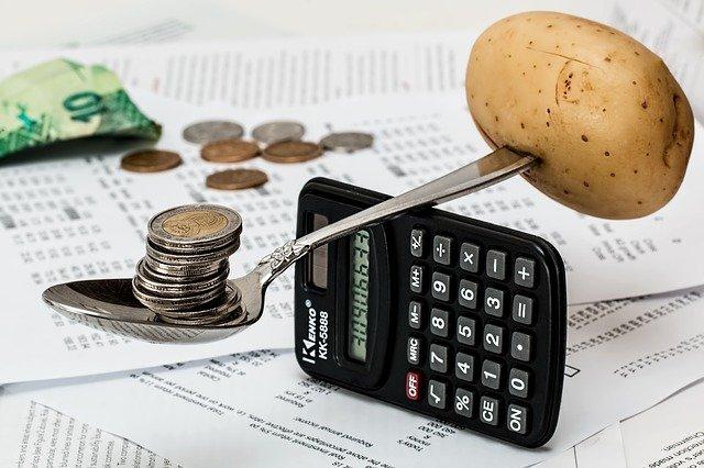 domácí rozpočet