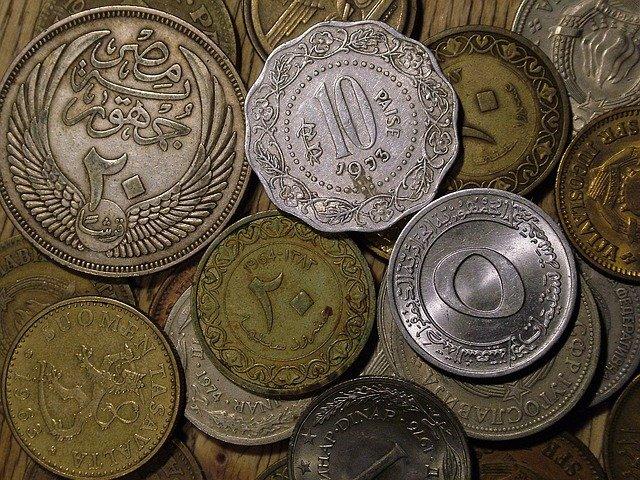 mince různého stáří a druhu
