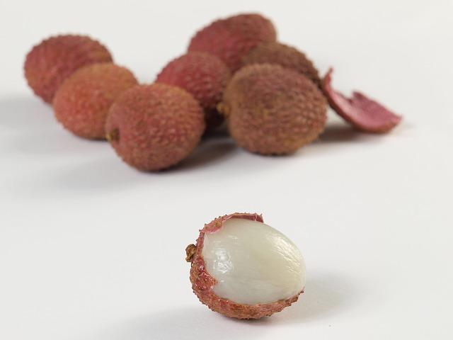 plod liči