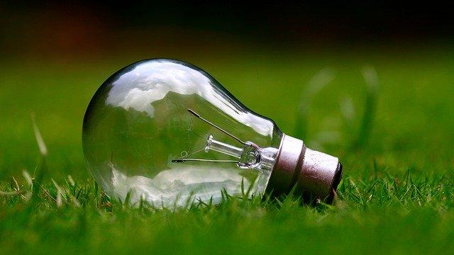 žárovka na trávníku