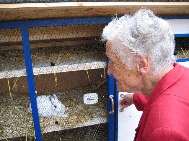 babička u králíkárny